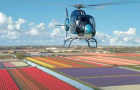 Start helicopter flights on Saturday 31 March