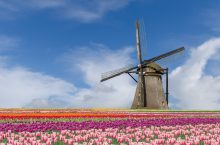 Top 10 Hotels nearby Keukenhof Flower Garden