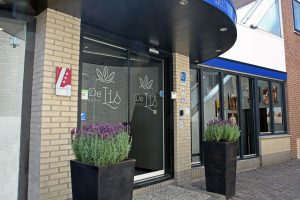 hotel de Lis Hotel arrangementen