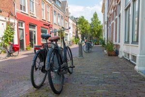 Fietsroute rondje Haarlem Keukenhof en bollenvelden