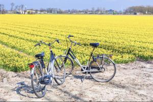 begeleide fietstocht tourz