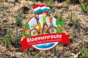 Bloemenroute de fietsroute langs tulpenvelden